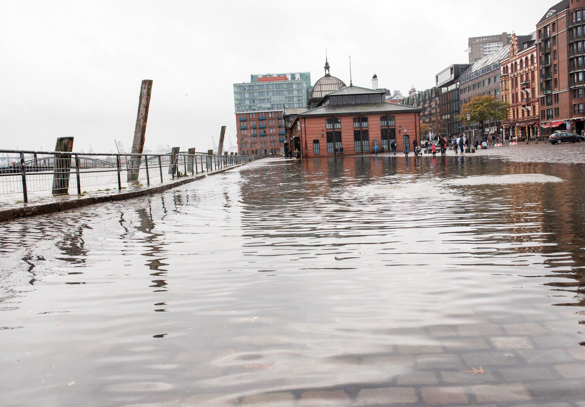 Bild zu Floods in Hamburg