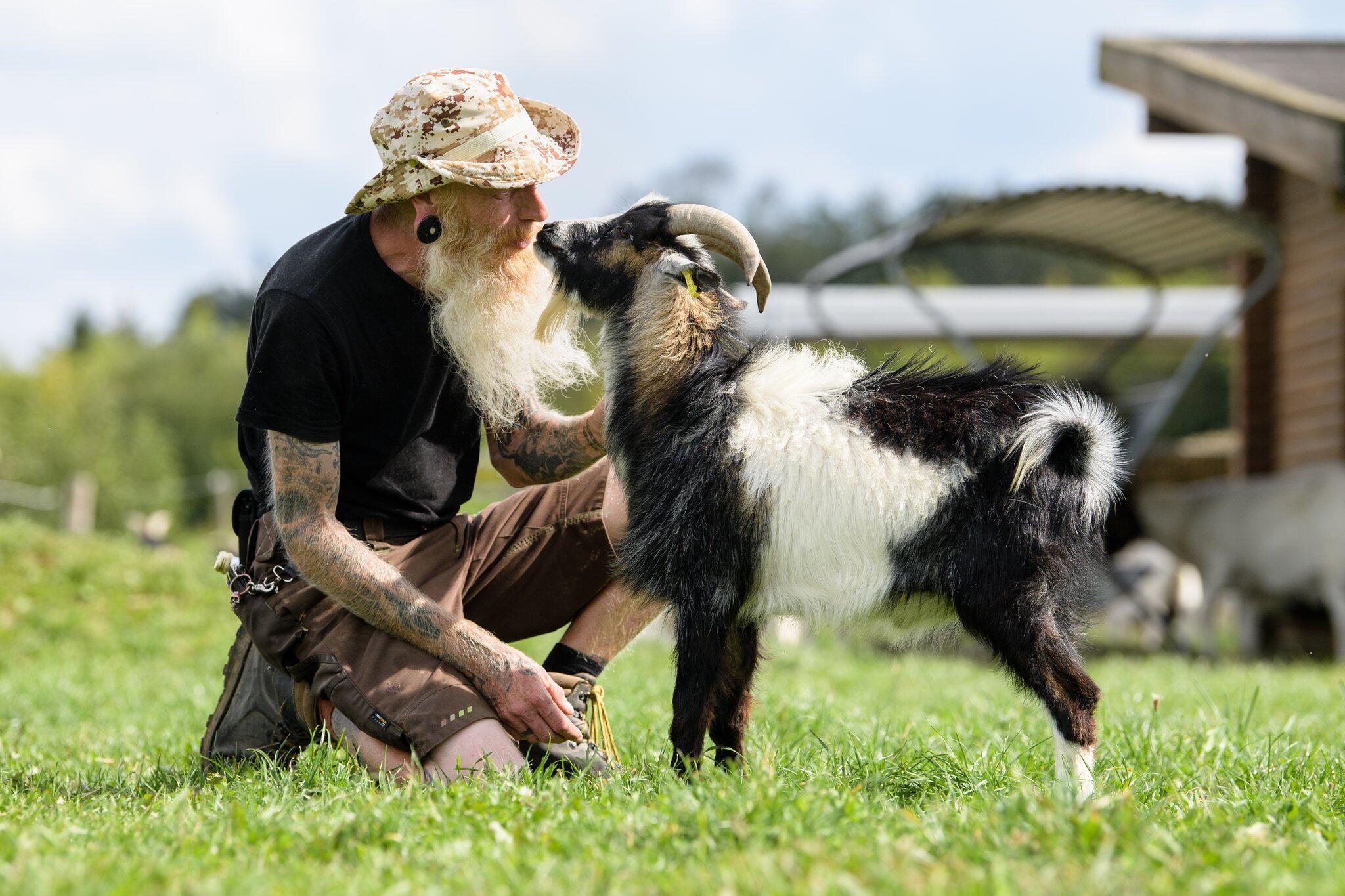 Bild zu Streit um Ziegenbock geht vor Gericht