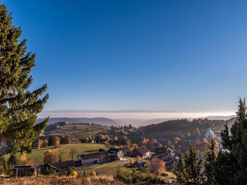 Bild zu Ausblick ins Tal