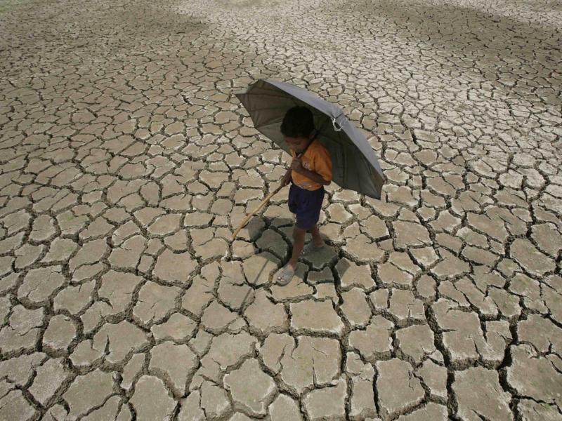 Bild zu Dürre in Indien