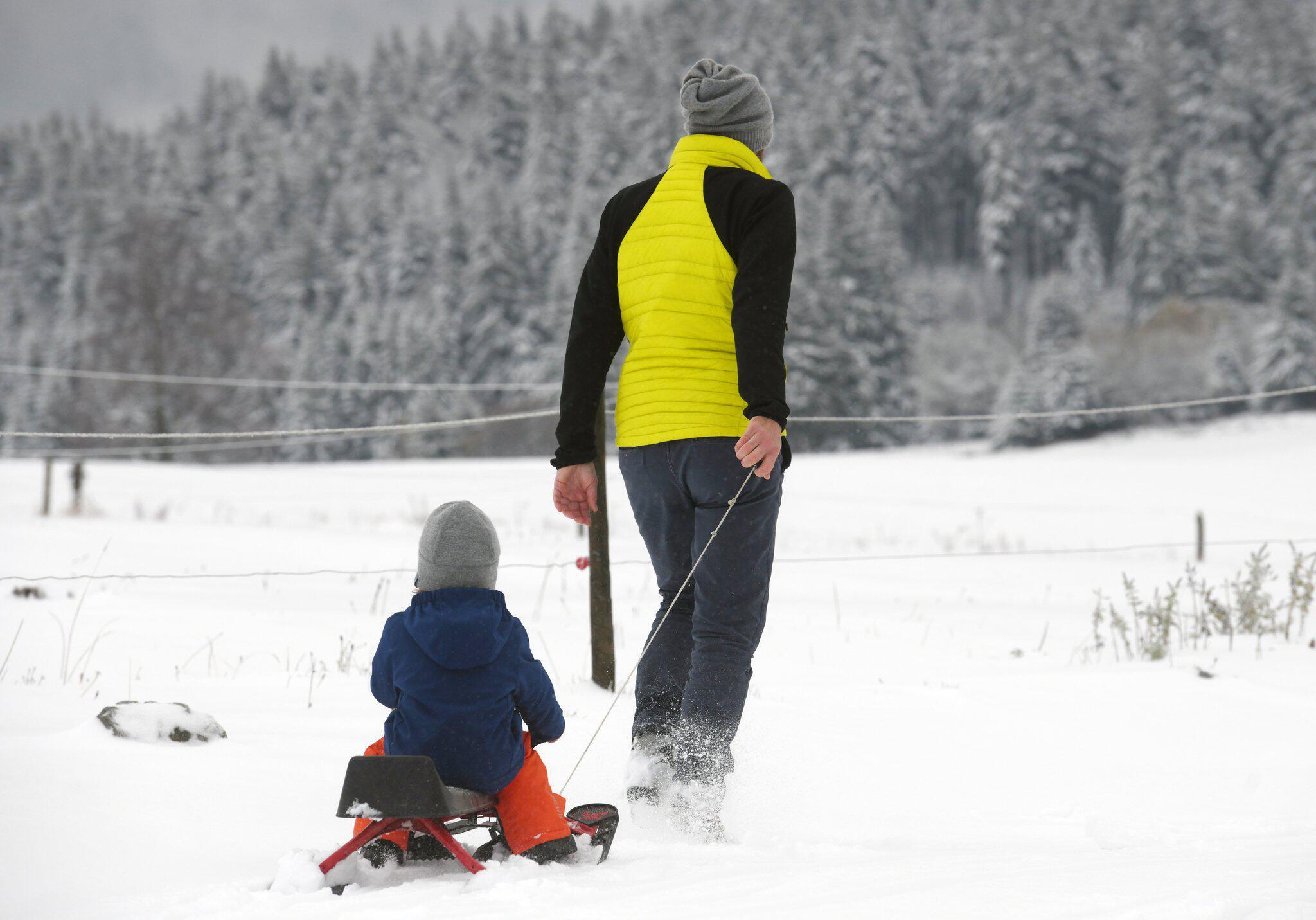 Bild zu Schnee im Schwarzwald