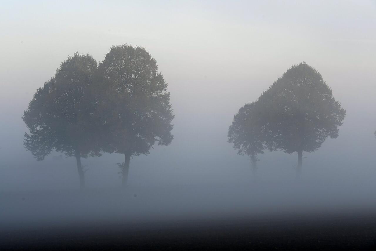 Bild zu Nebel