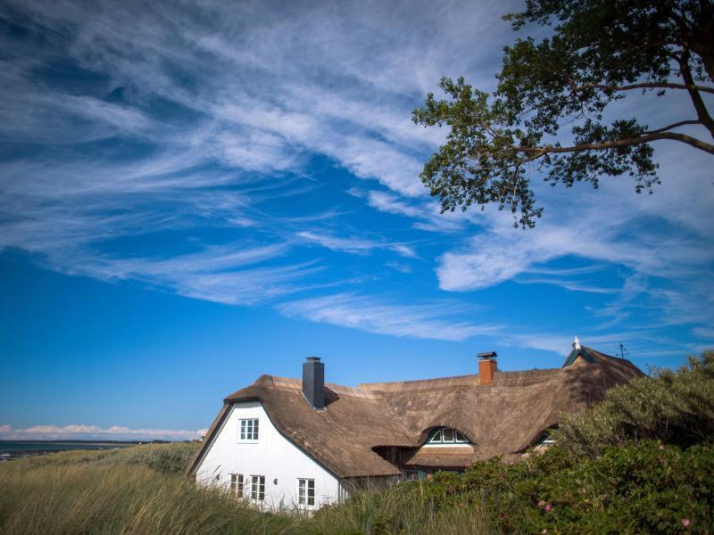 Bild zu Ferienhaus auf der Halbinsel Fischland