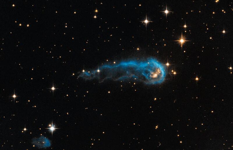 Bild zu Kaulquappe schwimmt im Weltall