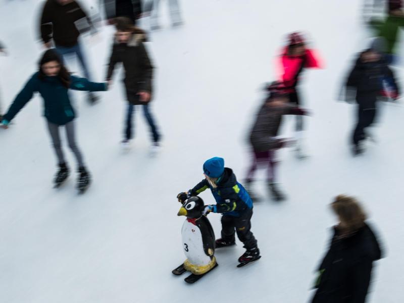 Bild zu Auf der Eislaufbahn