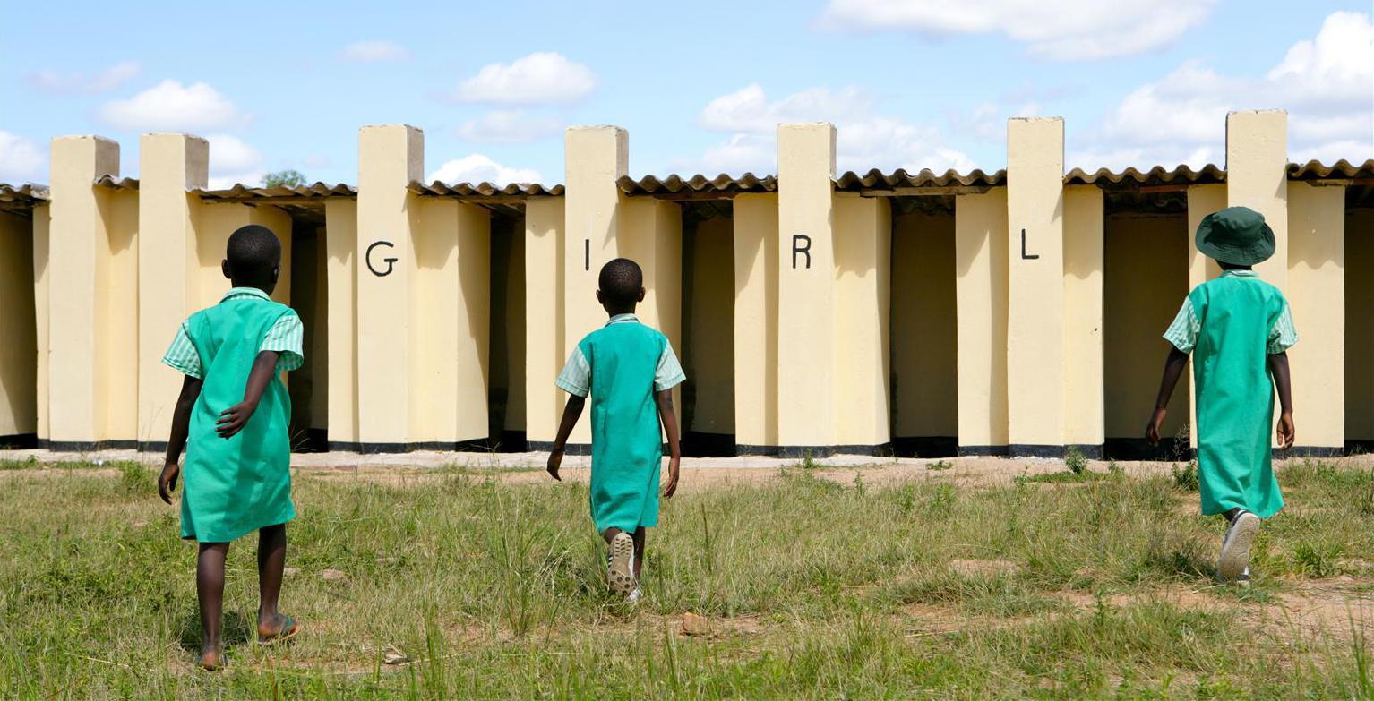 Bild zu World Toilet Day