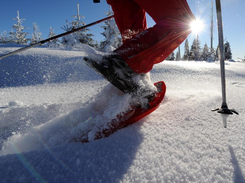 Bild zu Schneeschuh-Wandern