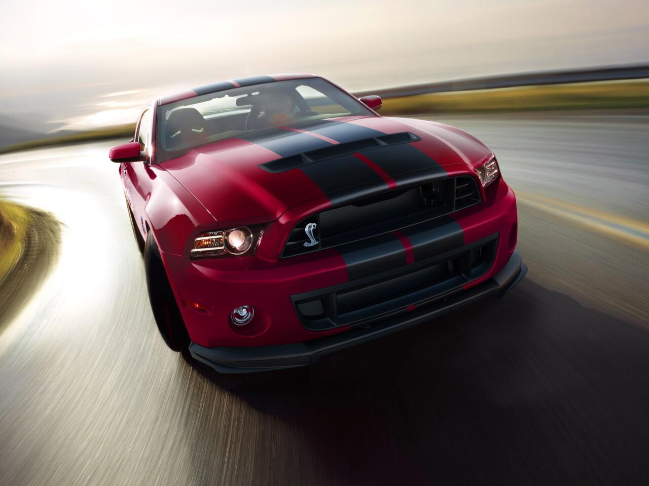 Bild zu 2014er Shelby GT500