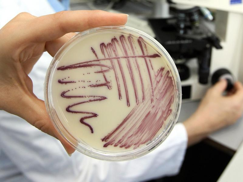Bild zu Resistente Bakterien
