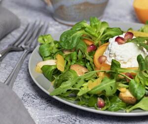 Salat ungesund
