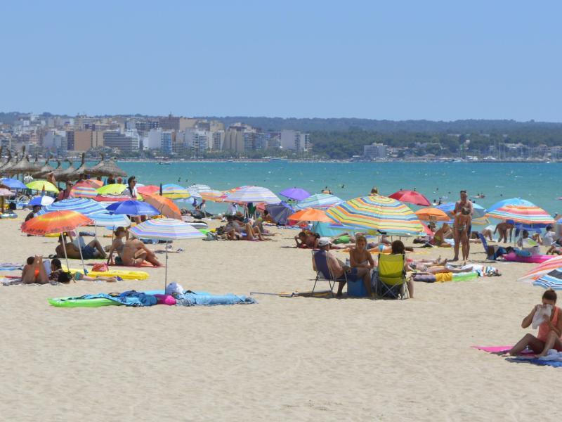 Bild zu Playa de Palma