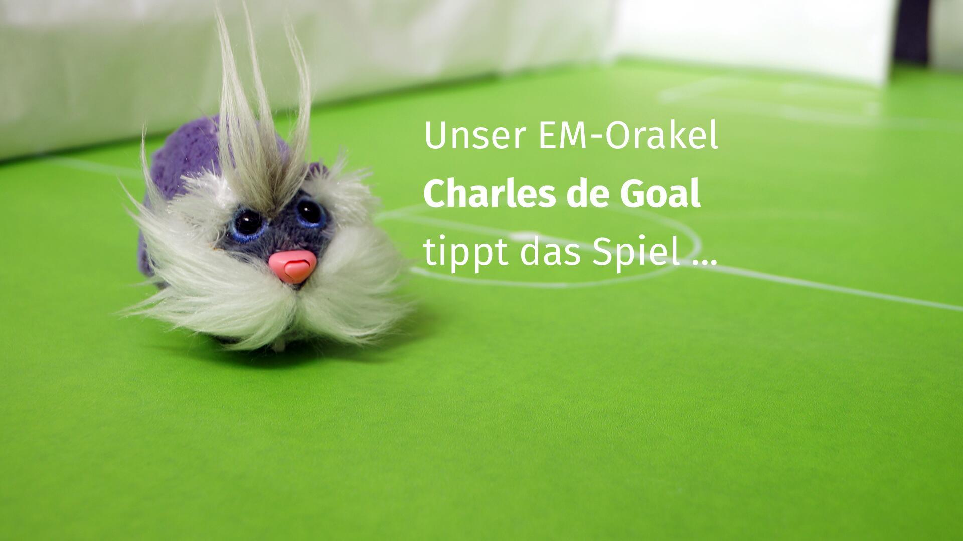 Bild zu EM-Orakel, Belgien, Italien