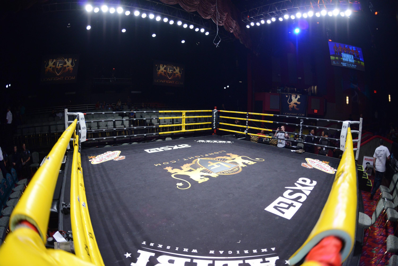 Bild zu MMA