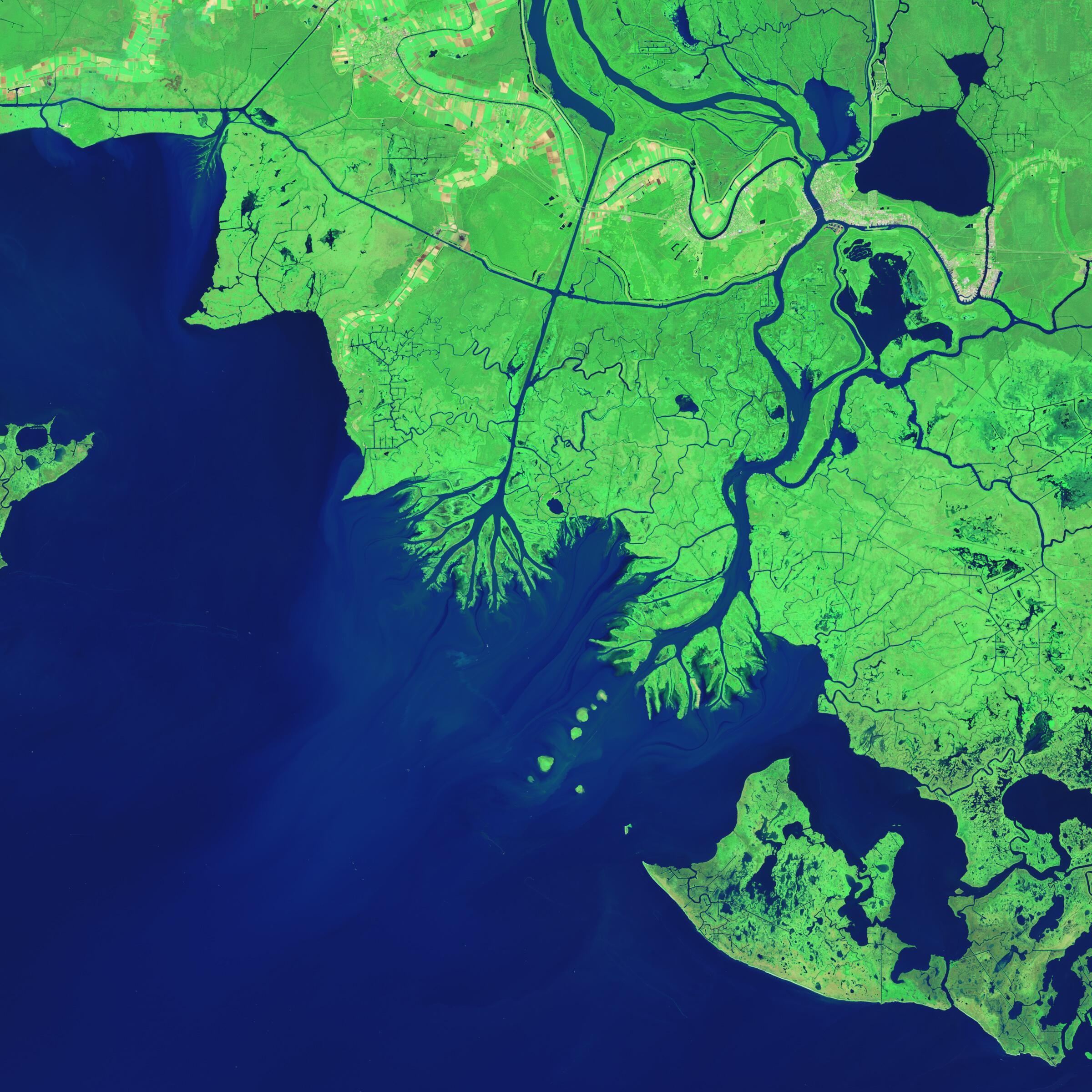 Bild zu Mississippi-Delta