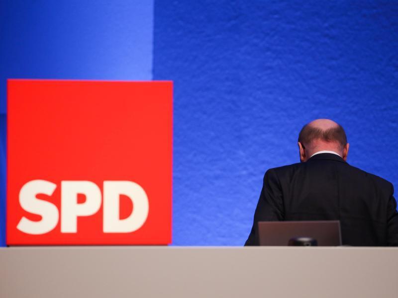 Bild zu Martin Schulz