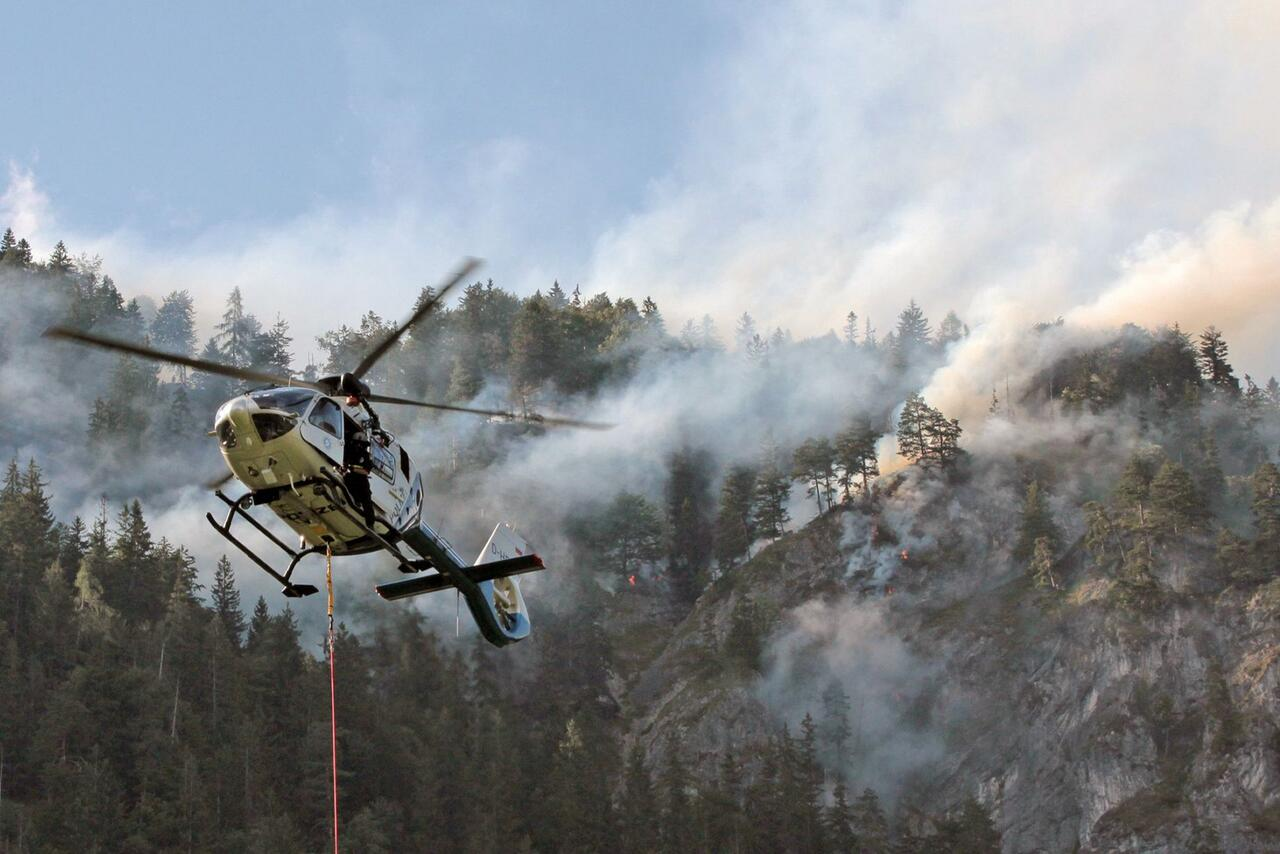 Bild zu Forest fire in mountain forest in Inntal valley
