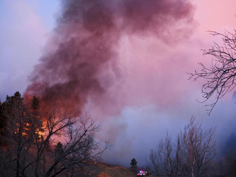Bild zu Waldbrand in Colorado