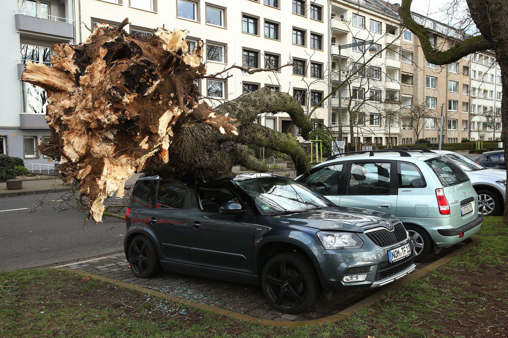 Bild zu Sturmtief Eberhard - NRW