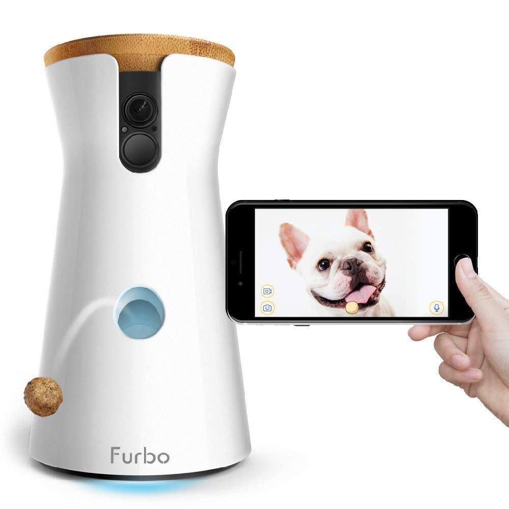Bild zu Cyberweek, Cyber-Monday, Black Friday, Schnäppchen, Shopping, Sparen, Amazon, Furbo, Hund