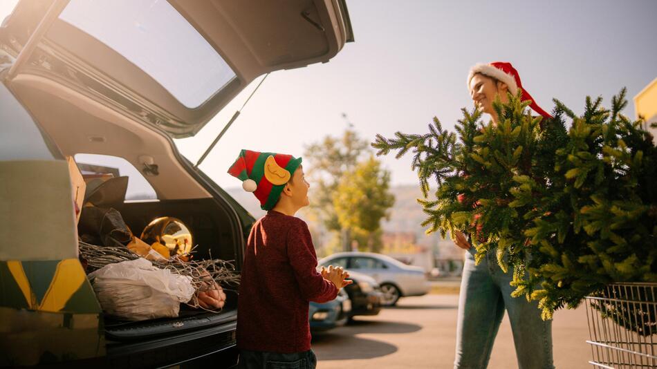 Weihnachtsbaum, Transport