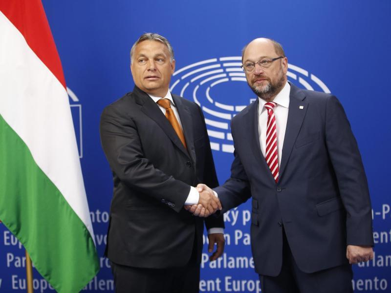 Bild zu Orban und Schulz