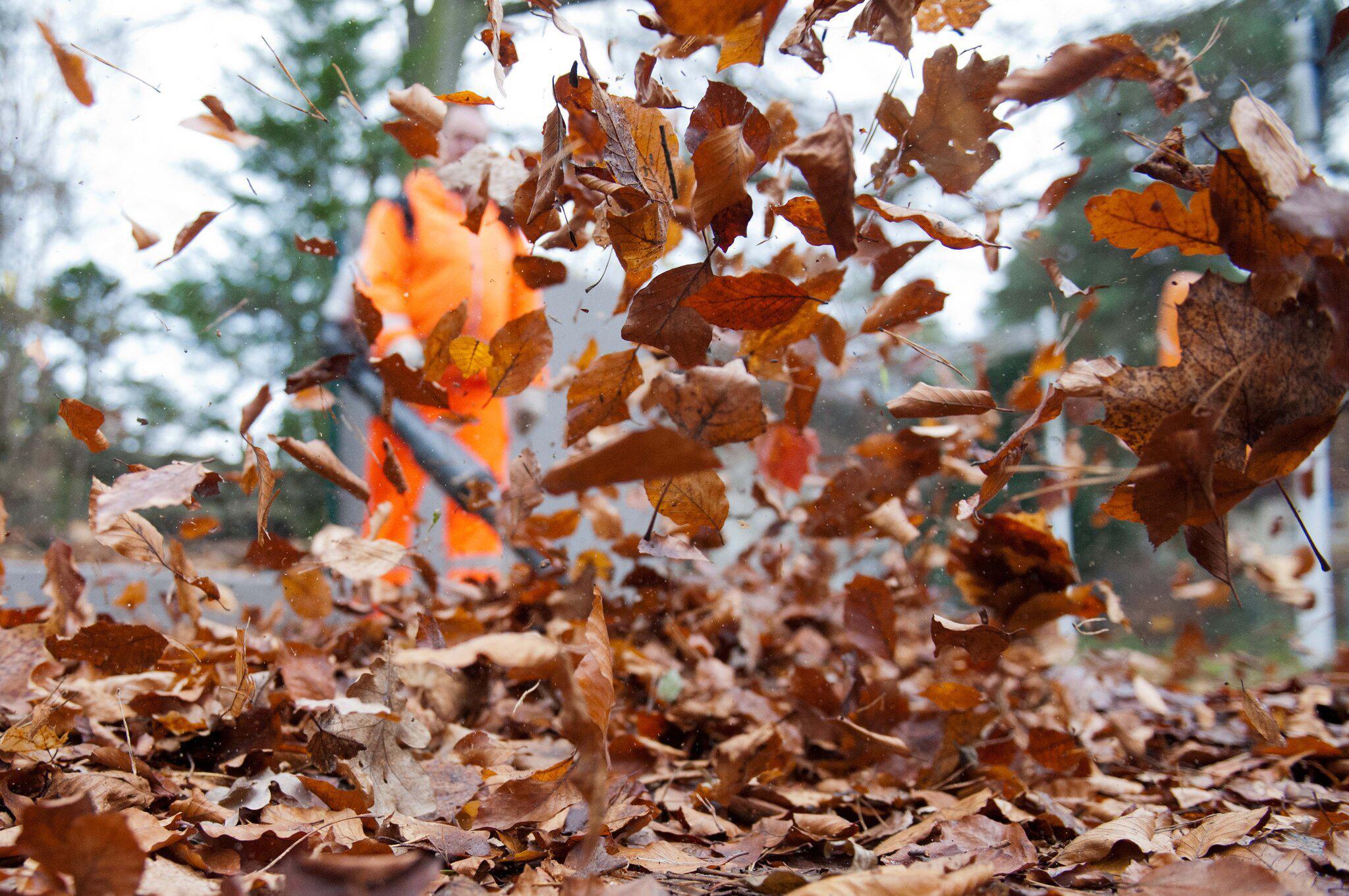 Bild zu Herbst-Listicle