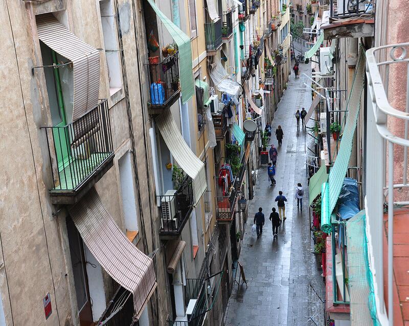 Bild zu Gat Xino / Barcelona