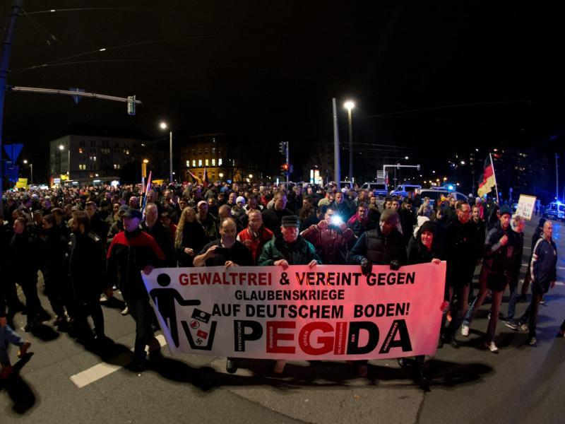 Bild zu Demonstranten in Dresden