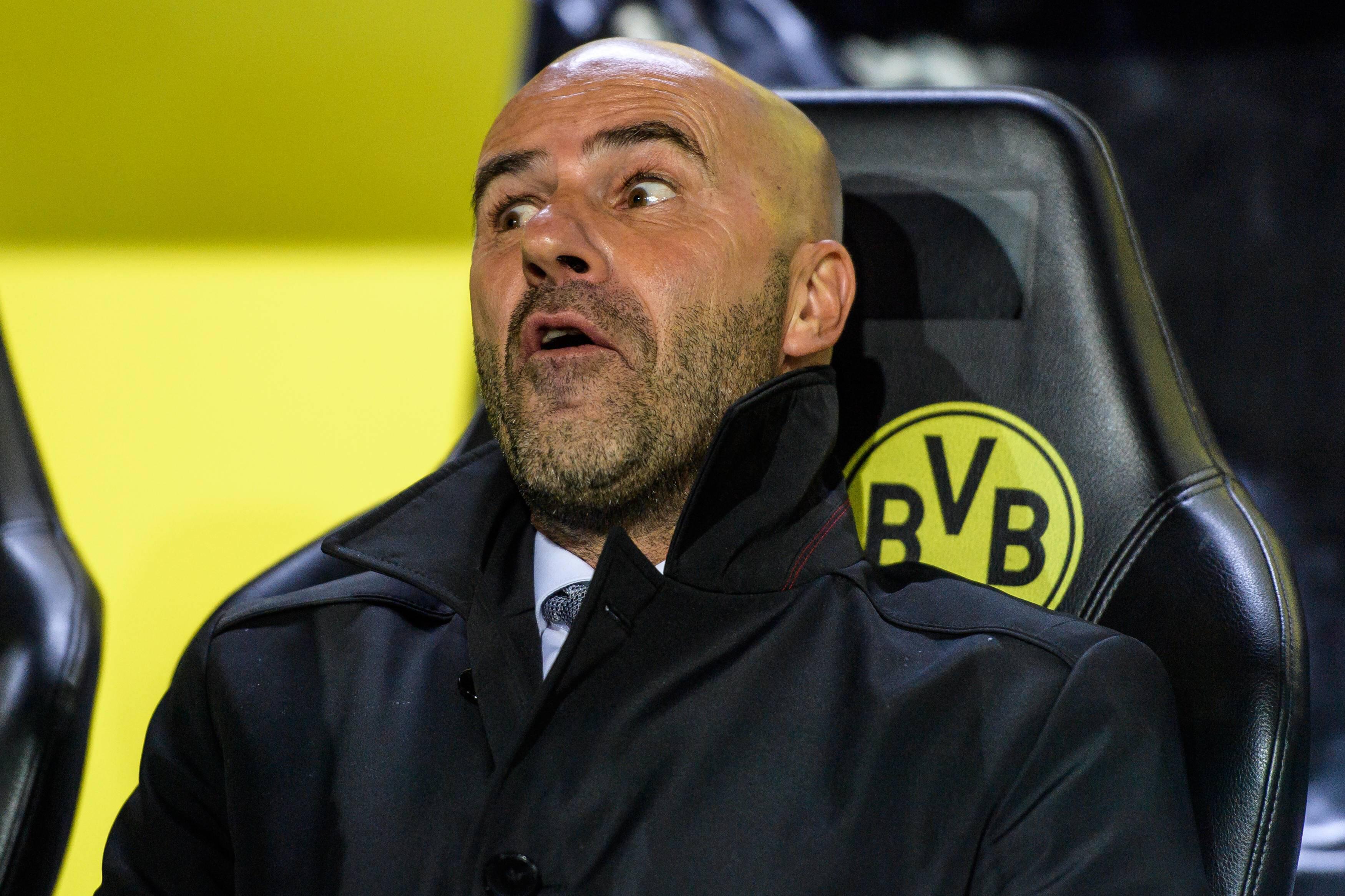Bild zu Jupp Heynckes, Peter Bosz, Bundesliga, Trainer, Fazit