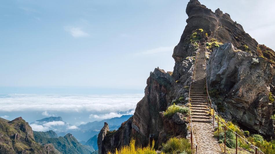 Madeira, Corona