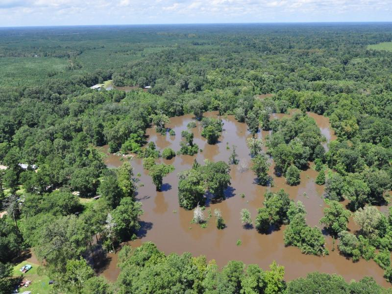 Bild zu Überschwemmungen in Baton Rouge