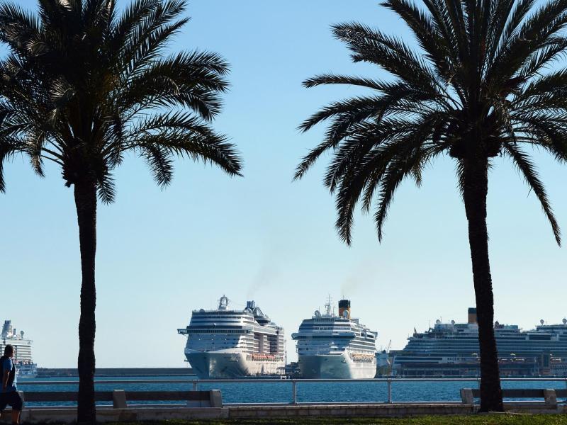Bild zu Kreuzfahrtschiffe im Hafen von Palma