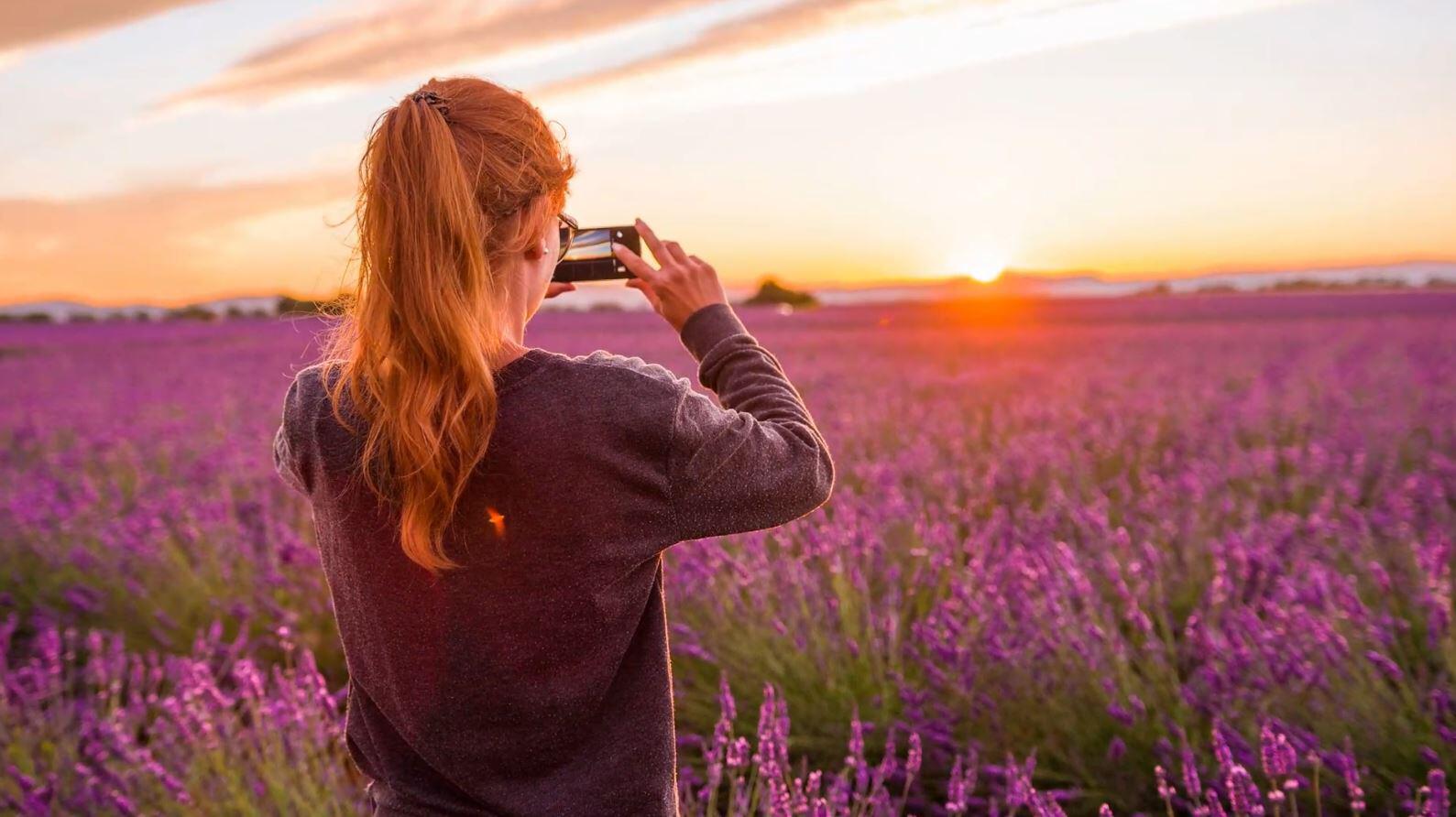 Bild zu Lavendel-Bauern, Lavendel, Provence, Frankreich, Instagram, Instagrammer, Influencer