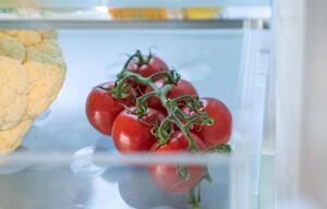 Tomaten liegen im Kühlschrank