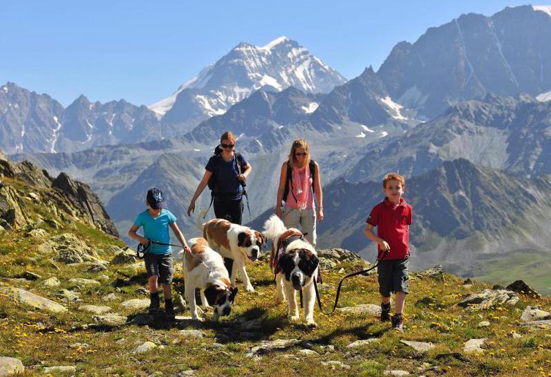 Bild zu Auf dem Sankt-Bernhard-Pass