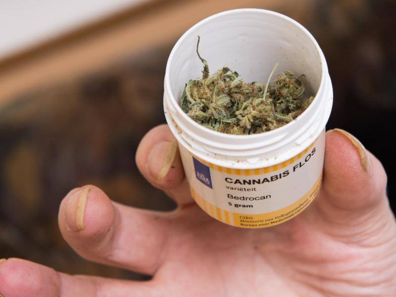 Bild zu Cannabis auf Rezept