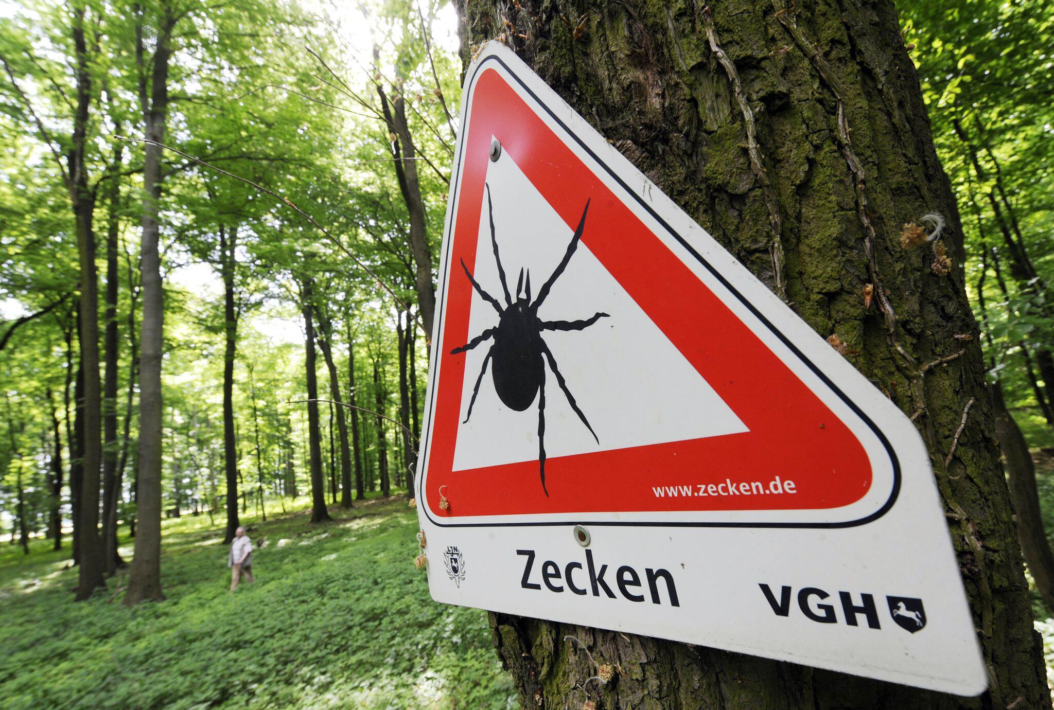 Bild zu Zecken-Gefahr in Niedersachsen