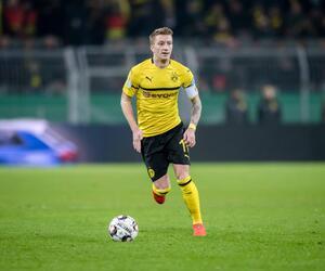 BVB, Dortmund, Reus, Favre