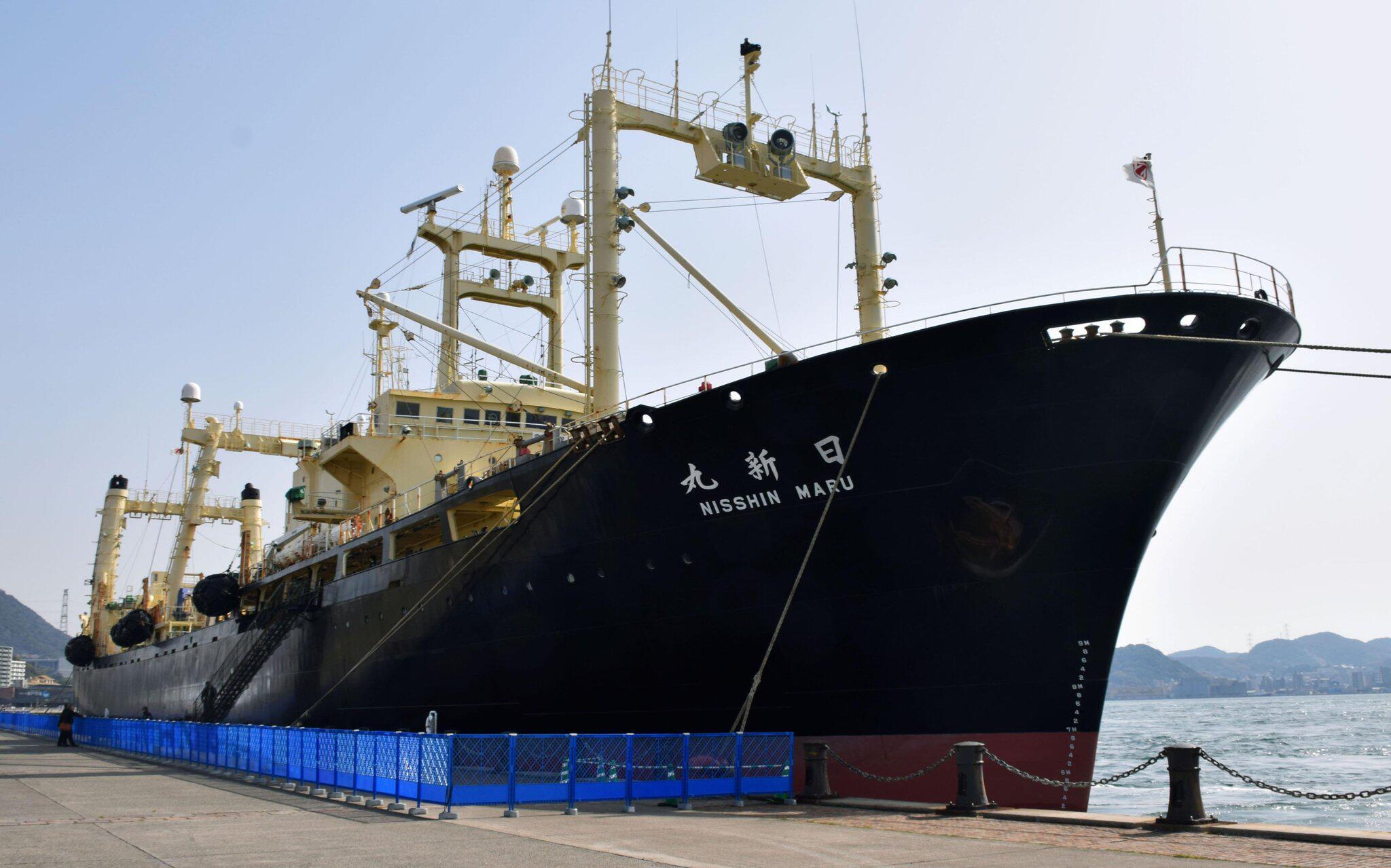 Bild zu Walfang in Japan
