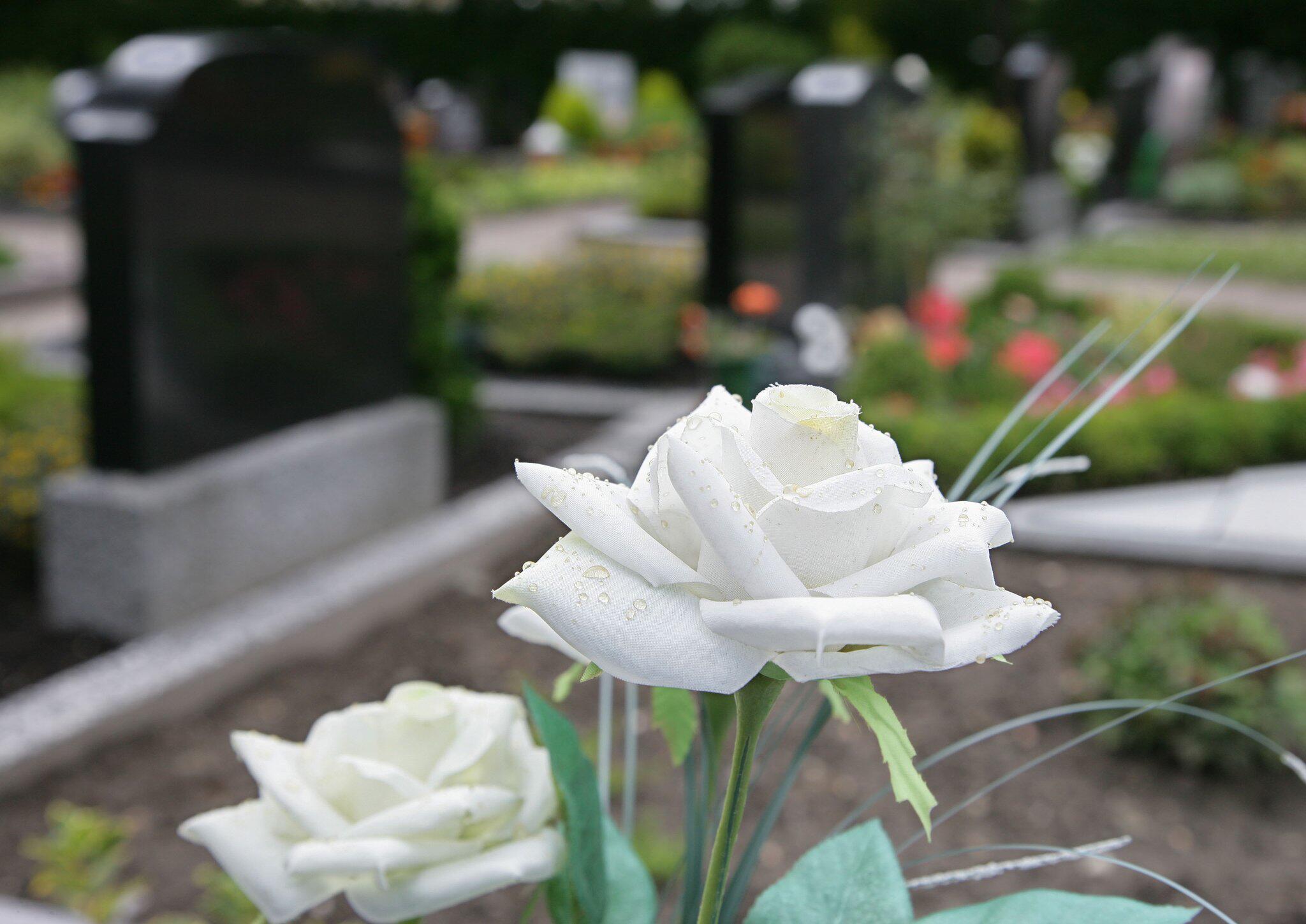 Bild zu Friedhof