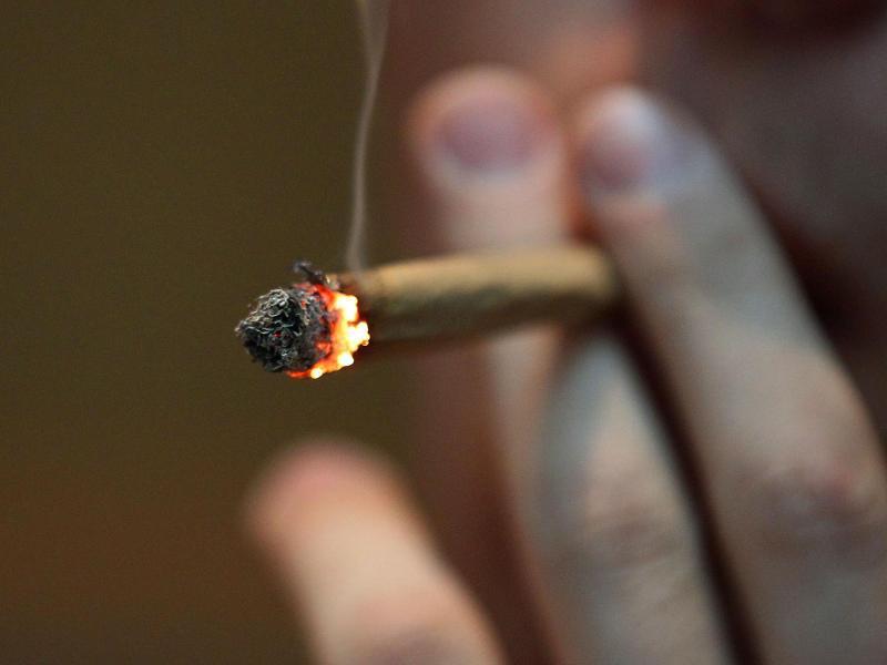 Bild zu Cannabis