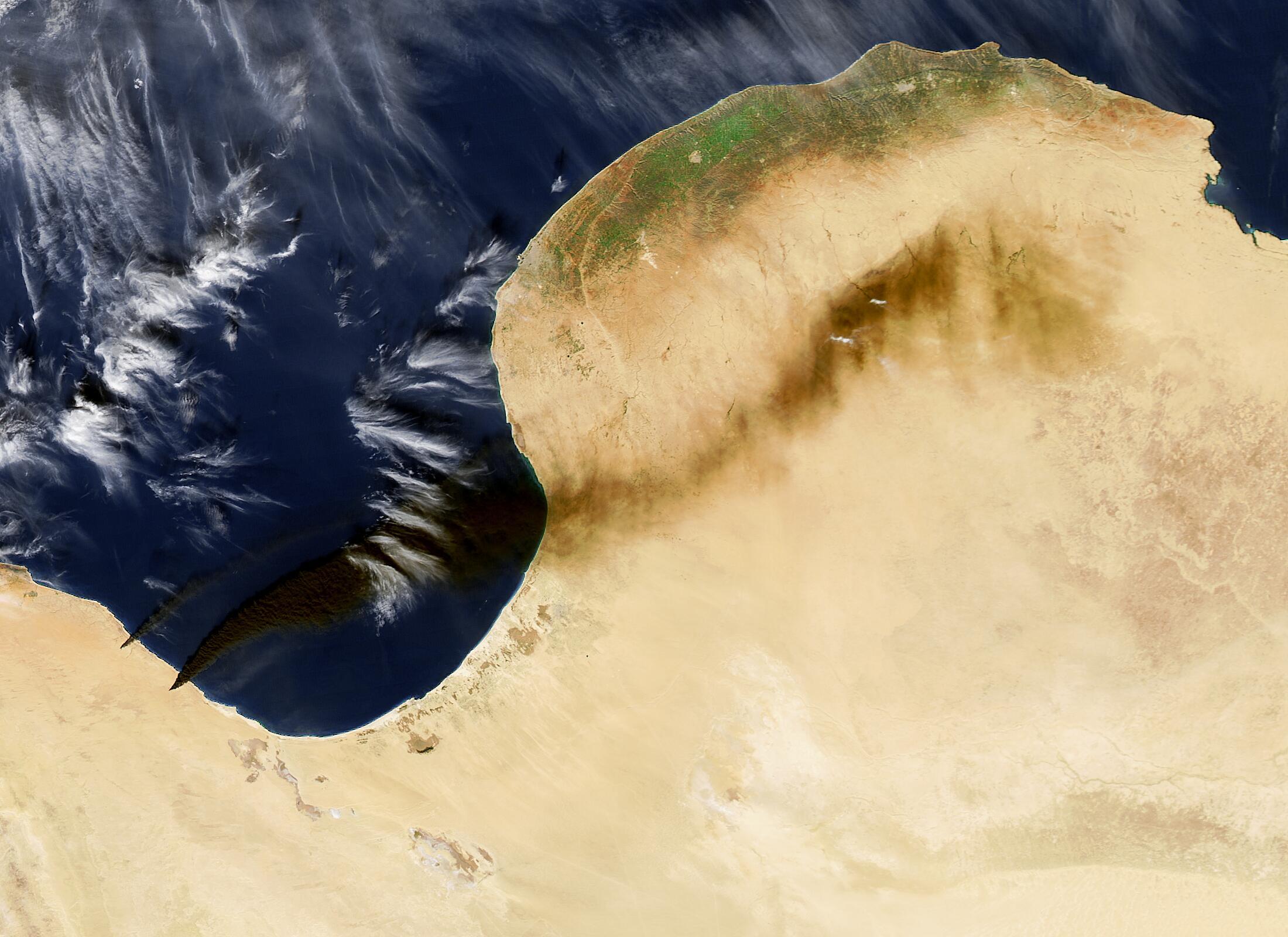 Bild zu Libyen