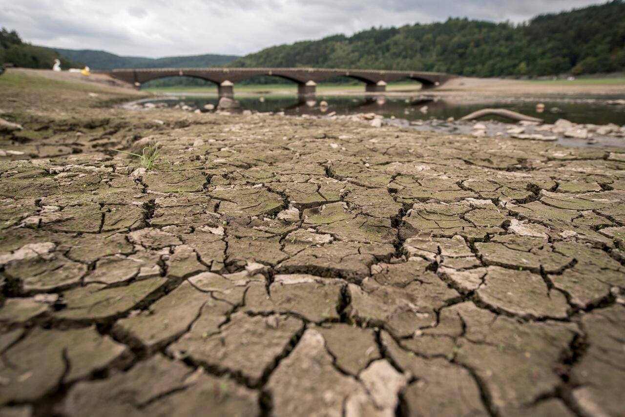 Bild zu Weltklimarat IPCC - Dürre