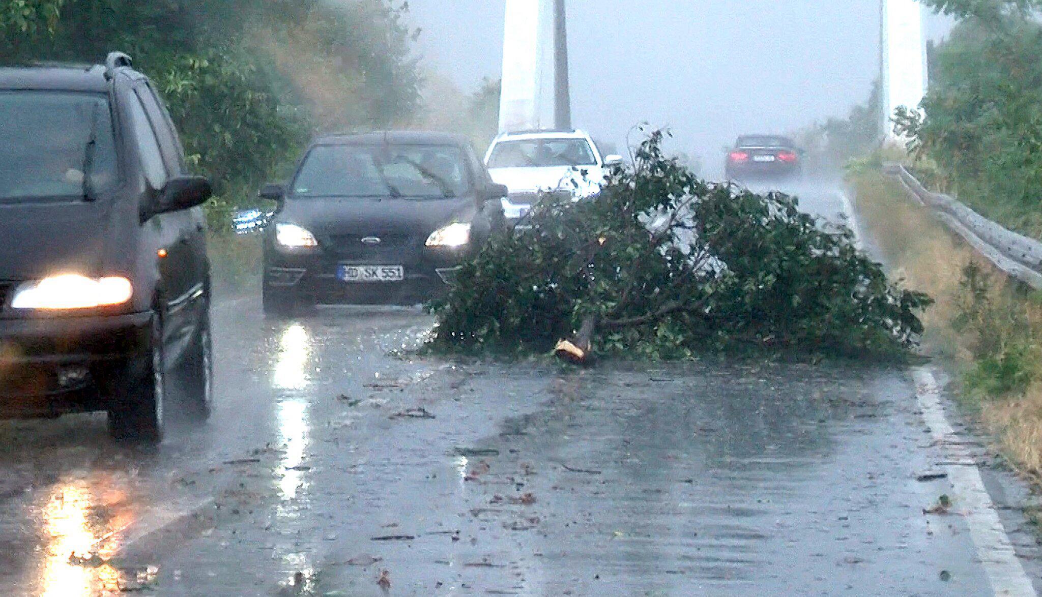 Bild zu Unwetter bei Mannheim