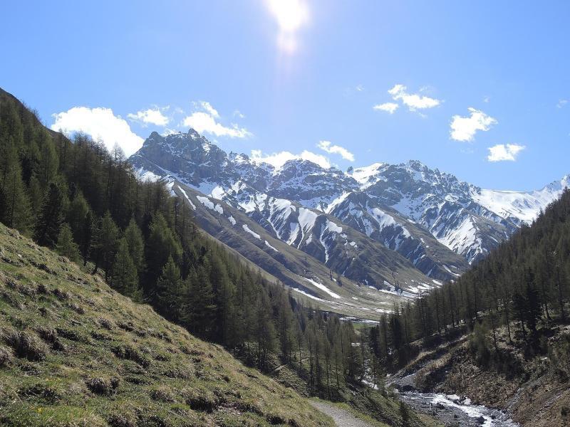 Bild zu Schweizerischer Nationalpark