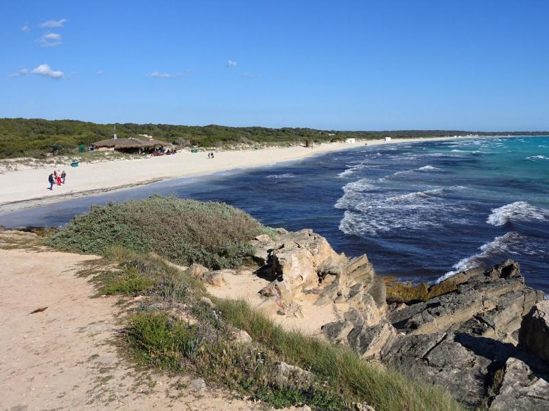 Bild zu Strand von Es Trenc