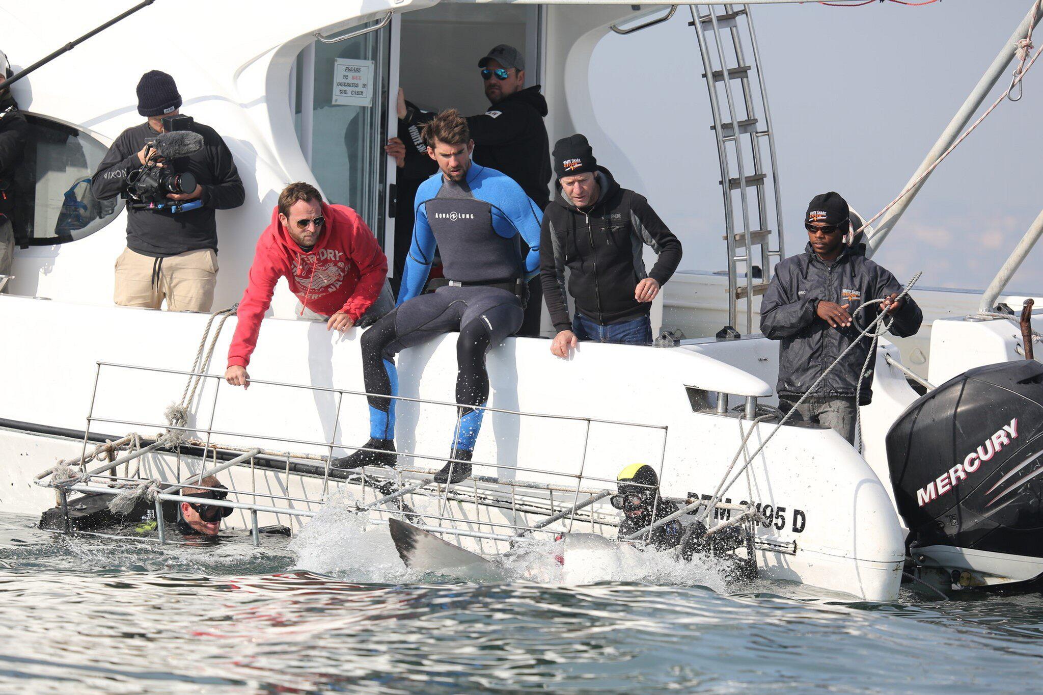 Bild zu Michael Phelps, Weißer Hai