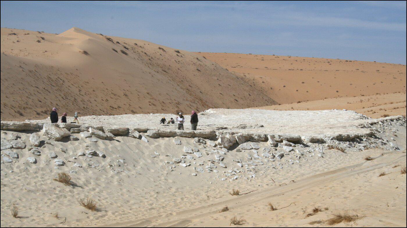 Bild zu Nefud-Wüste