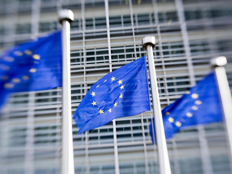 Bild zu Europaflaggen