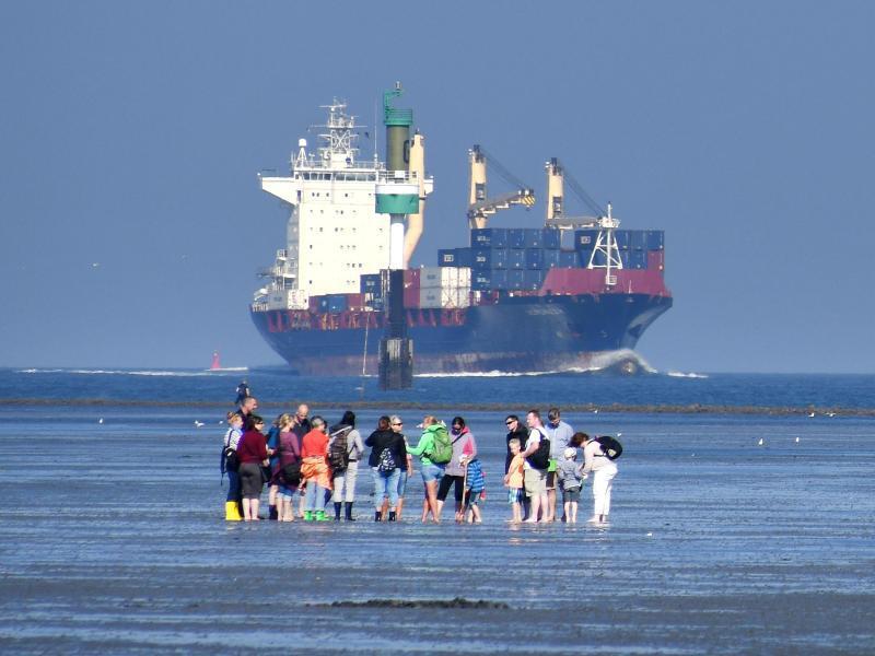 Bild zu Wattwanderer in Cuxhaven-Döse